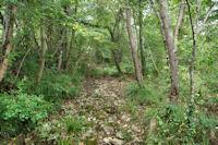 Le chemin remontant le vallon du Pujouet