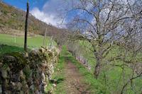 Le joli chemin remontant de Caraybat à Sarrot