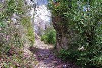 Passage entre les rochers à Sarrot