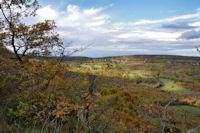Le vallon du ruisseau de la Gaillasse