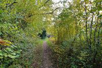 Le sentier entre Dreuilhe et Lavelanet