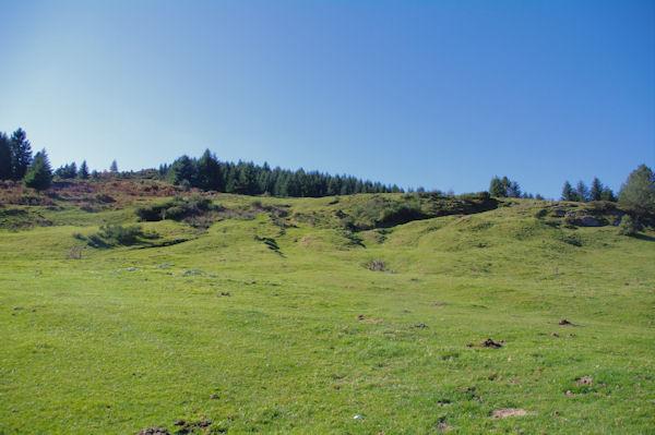 Les pelouses au Col de Port