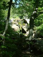 Une cascade pres du lac des Monts d&#39Olmes