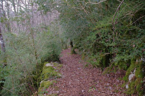 Le chemin en descendant sous le Pic Marot