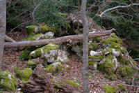 Un orri devant la grotte de l'eglise catholique