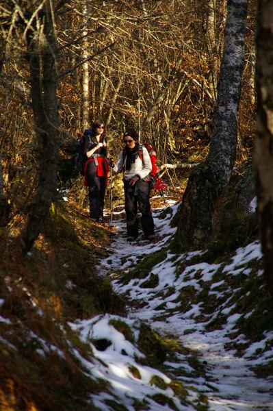 Le chemin entre le Col de Traucadou et Les Brougues