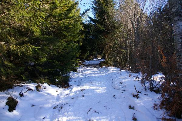 Le sentier enneigé menant au Mont Fourcat
