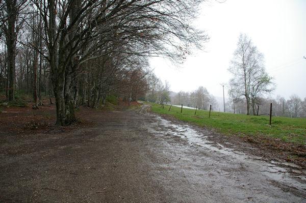 Le chemin remontant Les Gours depuis le Col des Marrous