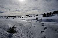 Le Plateau de Beille