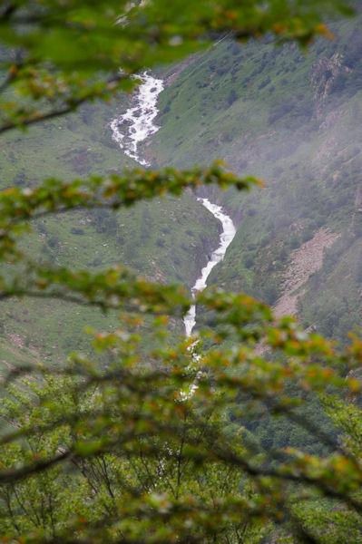 Le ruisseau de l_Artigue dévalant les pentes de Labelanouses