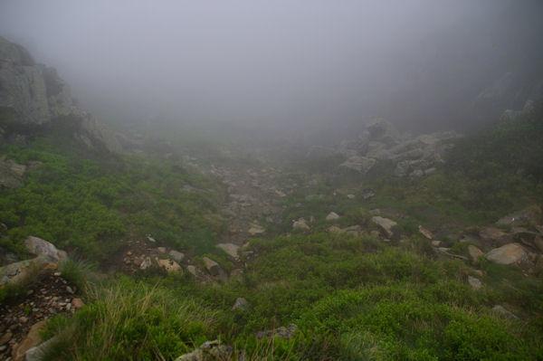 Le brouillard s_épaissit!
