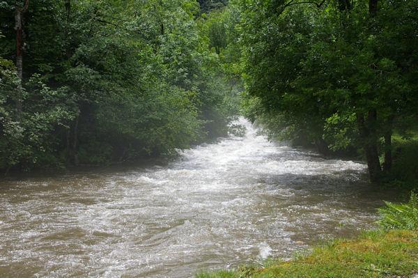 Le ruisseau de l_Artigue après les averses