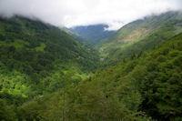 La vallee du ruisseau de l'Artigue depuis le Bois de Fontanal