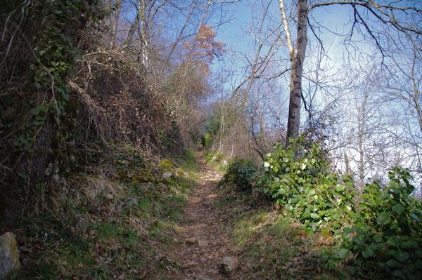 Le chemin montant à la Croix de St Sauveur