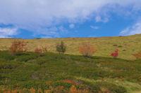 Paysage d'automne sous le Picou de Mounegou