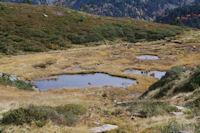 Laquets en remontant au Col de la Coumeille de l'Ours