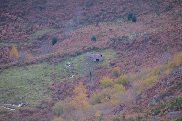 La Cabane pastorale de la Labère