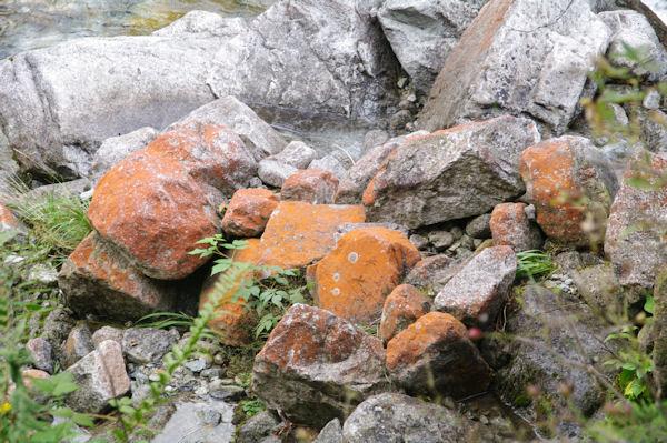 Le rochers rouges du Ribérot