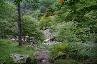La passerelle sur le Riberot permettant de passer rive droite