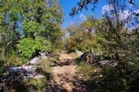 Le chemin du Bois de Margues