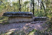 Le dolmen du Bois de Galtier