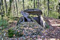 Le dolmen du Bois de Devès des Gleyettes