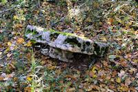 La table d'un dolmen vers Les Rosiers