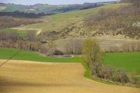 Un laquet sur le ruisseau du Tenac depuis En Guillamont