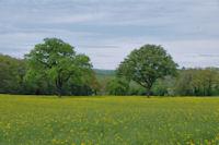 Joli paysage vers La Garnison