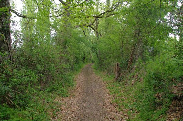 Le sentier après la D4, route de Samatan