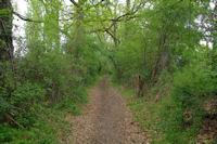 Le sentier apres la D4, route de Samatan