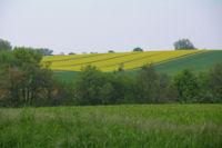 Panorama depuis La Gavachette