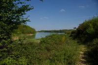 Vue depuis le fond de l&#39anse du ruisseau descendant de Senac