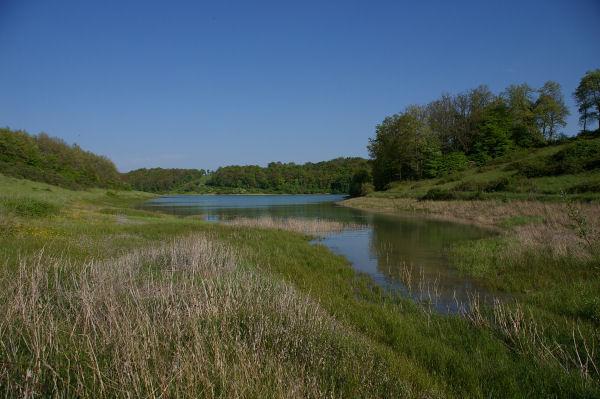 Vue du lac depuis l'anse du ruisseau du Moulin