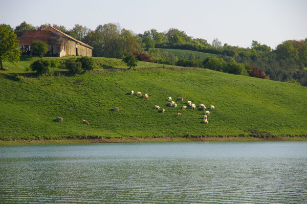 Vue de la ferme de Betpoué