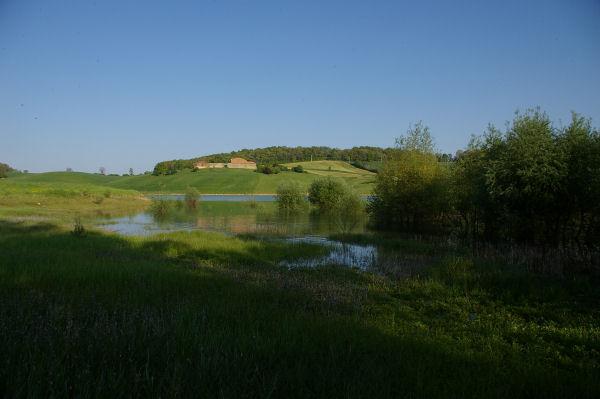 Vue depuis le fond de l&#39anse du ruisseau de Bruchon