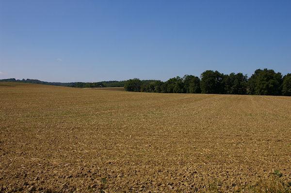 La plaine cultivée vers Roques