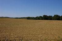 La plaine cultivee vers Roques