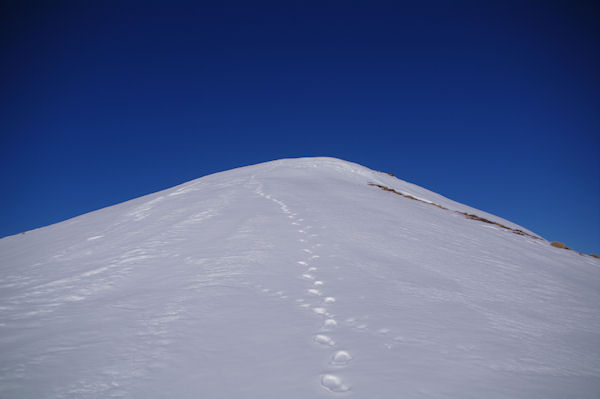 Le Cap de Pouy Pradaus