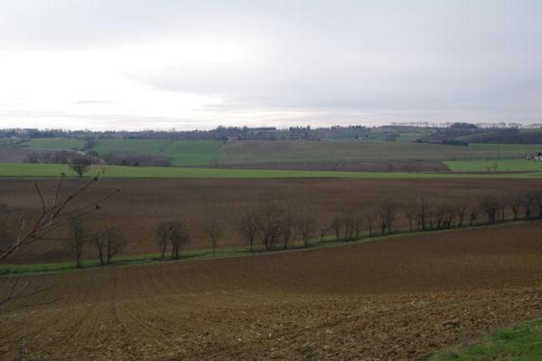 La vallée de la Marcaissonne depuis Préserville