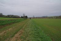 La vallee de la Marcaissonne vers En Combes