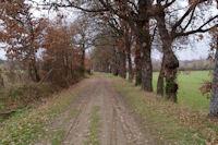 Le chemin vers La Borie