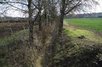 La Marcaissonne depuis la D94 vers Auzielle
