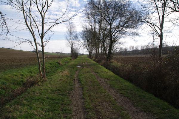 Le chemin dans la vallée de la Marcaissonne sous Borde Grande
