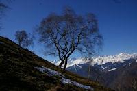 Les pentes enneigees au dessus d'Artigue, au fond, les sommets du Luchonnais
