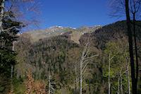 Le Sommet de Pique Poque et le Pic de Cagire depuis le chemin menant au Refuge de Larreix