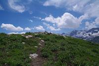 Le cairn sommital du Pic de Cecire