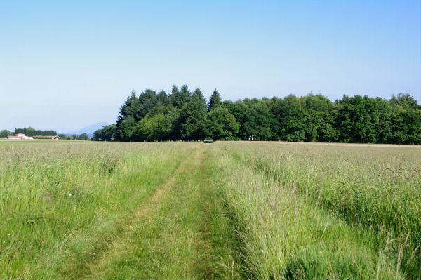 Le chemin menant à la Chapelle St Jean