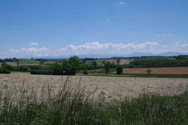 Vue sur le Pyrénées depuis Montgaillard sur Save