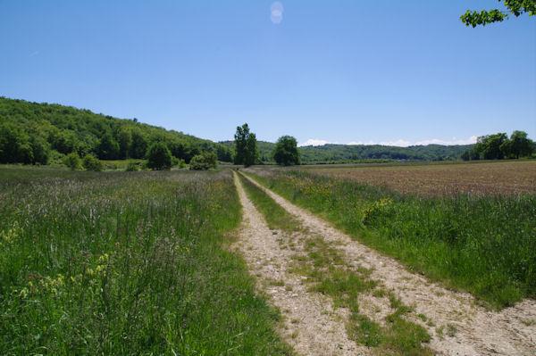 Le chemin sous le Bois de Coussaus